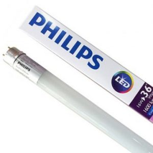 Bóng Led Philips tuýp Ecofit T8 8W 740/765 AP SL G